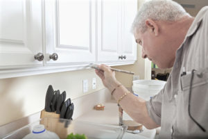 Should You Reface Your Cabinets or Paint Them? Learn the Pros and Cons of Both Options